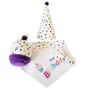 Doggie Birthday Set