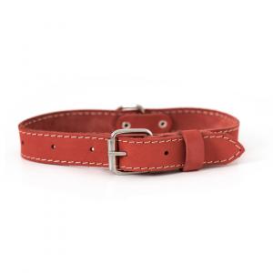 Euro-Dog Collar (Coral)
