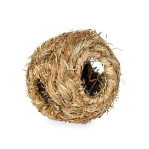 Prevue Pet Products Grass Ball